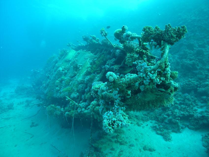 Südtour Divers Heaven Fleet, Südtour,Ägypten,Wrack,am Abu Galawa