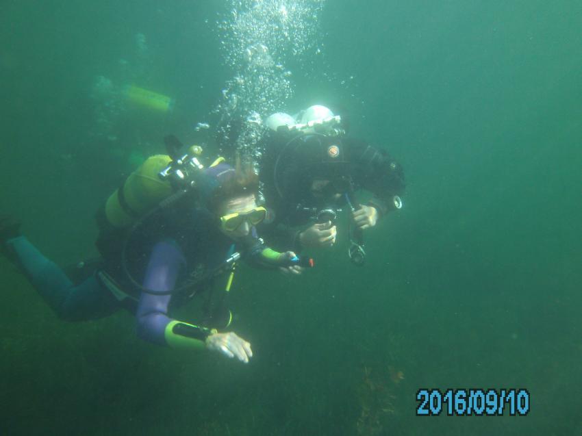 Open Water Diver, OWD, Tauchschein, Tauchschule Enjoy The Silence GbR, Deutschland, Nordrhein-Westfalen
