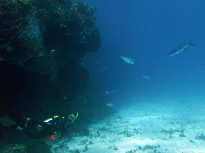 White Hole, White Hole,Bonaire,Niederländische Antillen