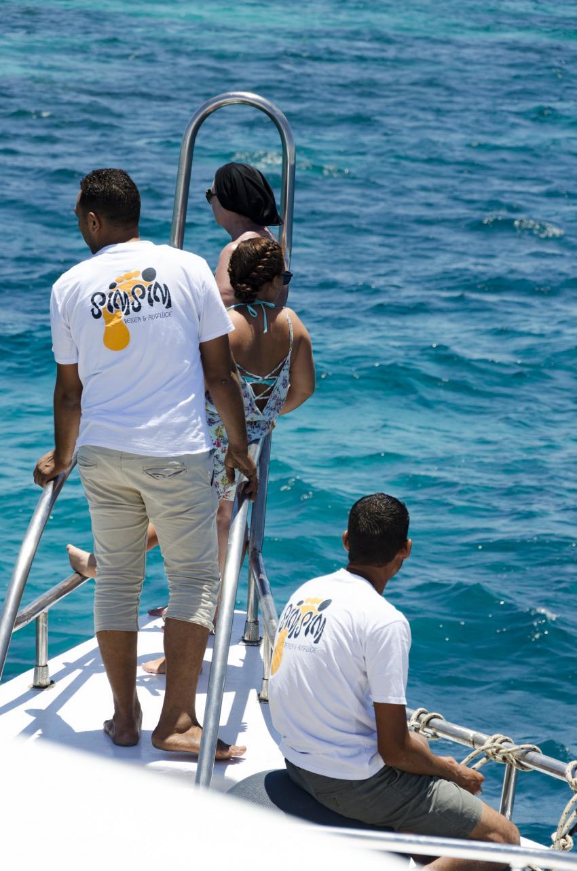 Delfinsuche mit der Crew, SimSim Dive, Ägypten, Hurghada