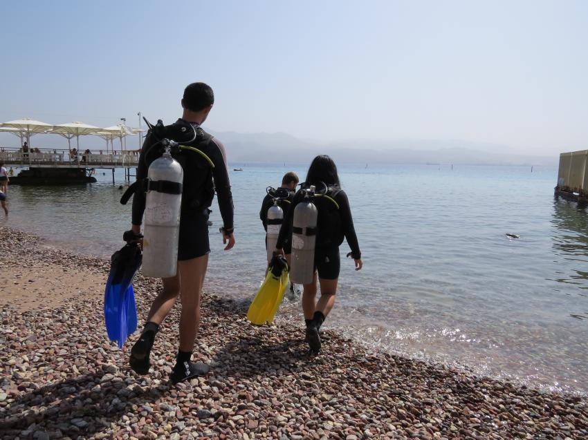 going to dive, diving, red sea, Manta Diving Center, Eilat, Israel