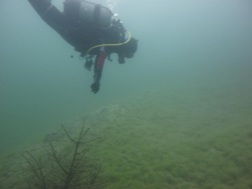 Oktober 2010, Grab des Unbekannten Taucher,Übungsplattform und Fische.Der See hat vieles zu bieten., Kehl-Kork Baggersee,Baden Württemberg,Deutschland