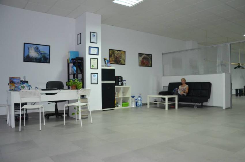 großräumige Tauchbasis, Tauchzentrum Teneriffa, Diveria Diving Center, Alcala Teneriffa, Spanien, Kanarische Inseln