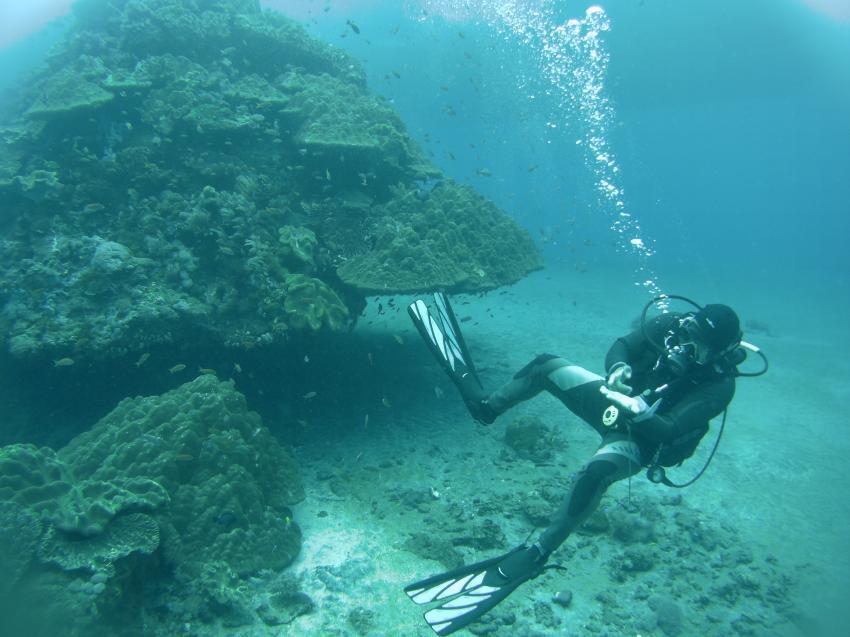 Cong, Dive Professional Padi, Yos Marine Adventures Bali, Indonesien, Bali