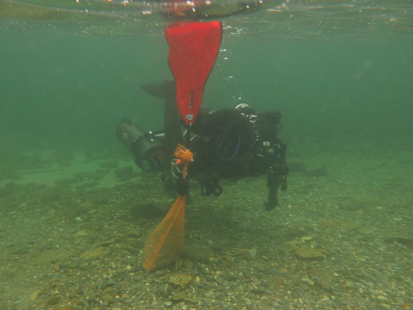 Geisternetzbergung Februar 2018, Ghostfishing, Tauchteam Bodensee, Bodensee, Deutschland, Baden Württemberg