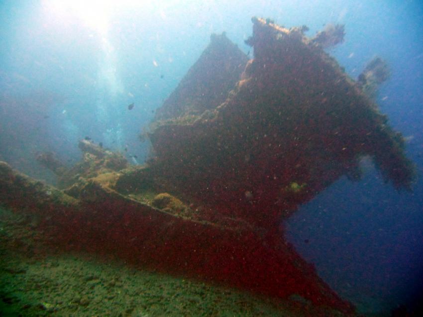 Korallen und Wrack der Liberty, Liberty Wreck,Tulamben,Indonesien