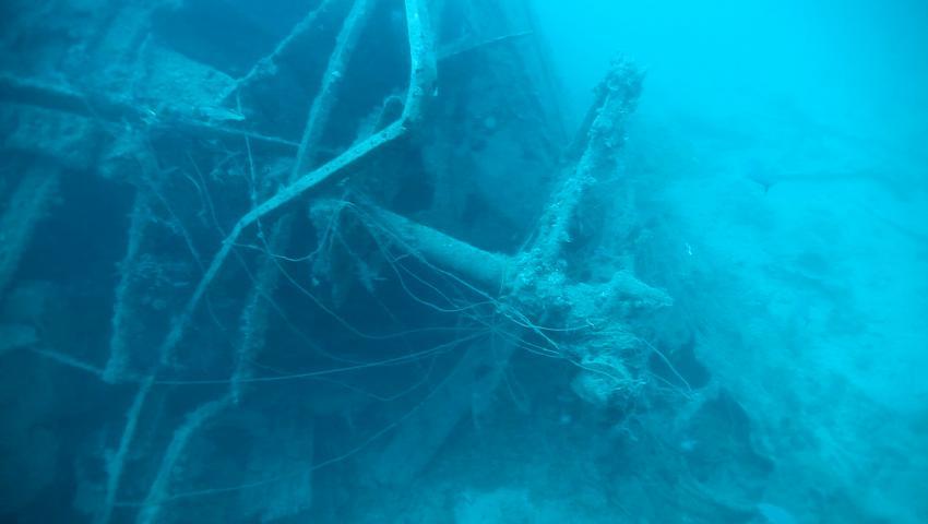 """SS San Juan (beschädigtes Heck mit Ruderquadrant), Wrack, SS San Juan, Wrack der SS """"San Juan"""", Ägypten"""