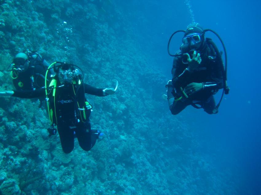 am Elfinstone, Extra Divers - Equinox, Marsa Alam , Ägypten, Marsa Alam und südlich
