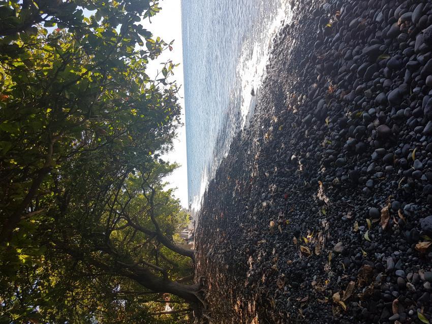 """Strand"", Joes Diving Bali - Die Tauchburg, Tulamben, Indonesien, Bali"