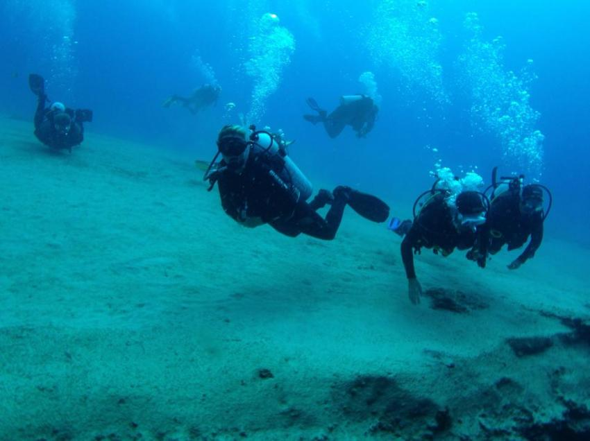Boat Diving Fuerteventura, tauchreisen fuerteventura, tauchen auf Fuerteventura, tauchbasis fuerteventura, Delphinus Diving School Fuerteventura, Spanien, Kanarische Inseln