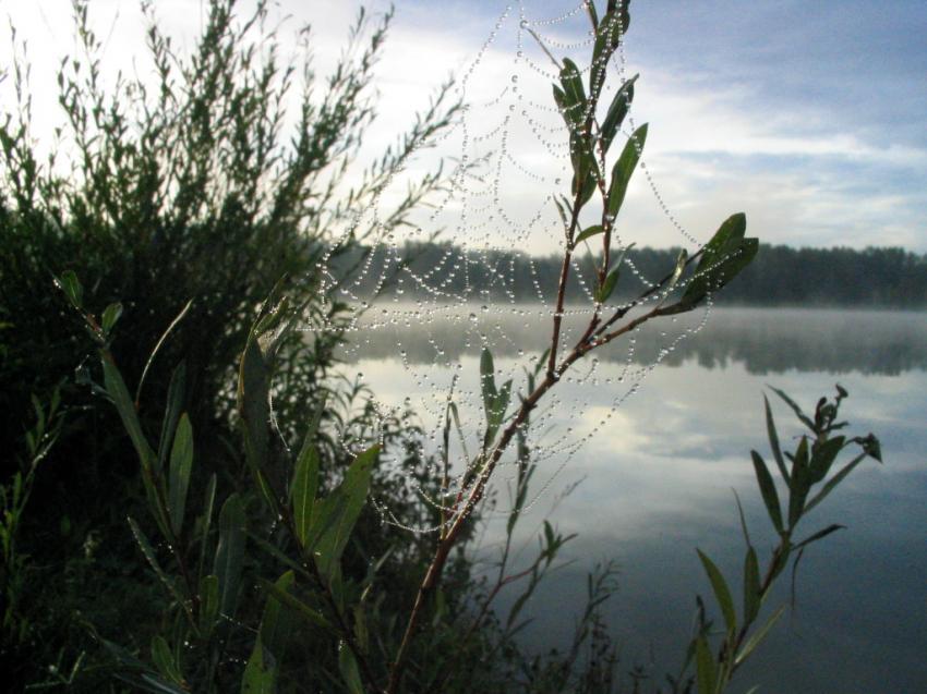 Feldkirchner Badeseen, Feldkirchner Seen/OÖ,Österreich