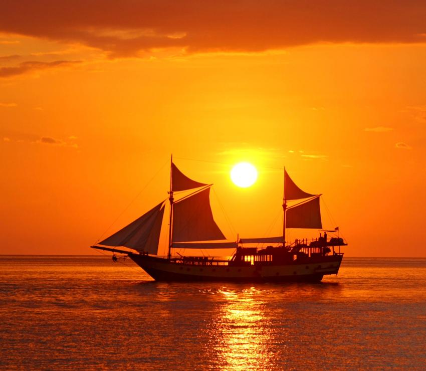 Wunderpus im Sonnenuntergang, liveaboard, Komodo, sunset, diving, dive, Wunderpus, Indonesien, Allgemein