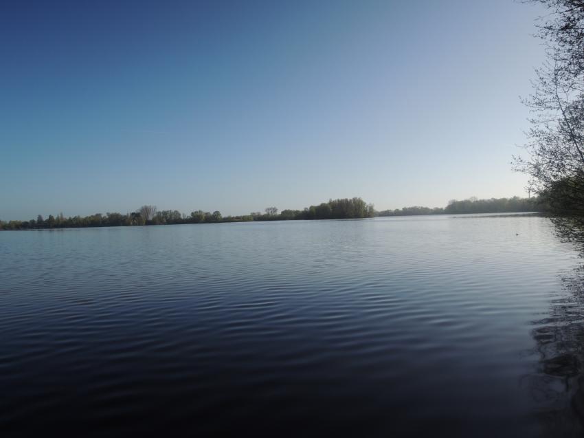 Wisseler See, tauchen, Wisseler See, Wissel bei Kalkar, Deutschland, Nordrhein-Westfalen