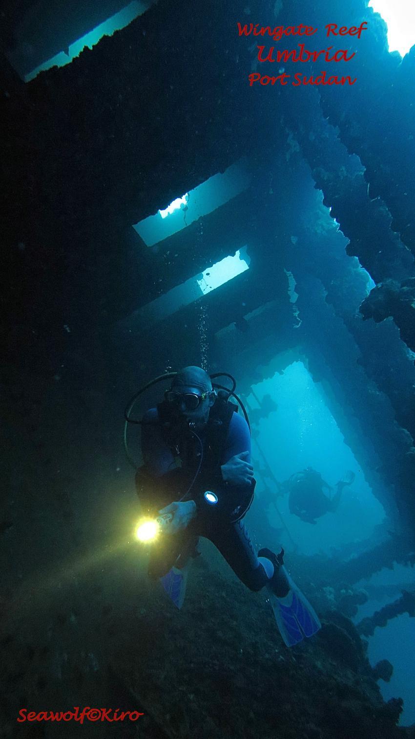 Aufbauten Umbria , Umbria Wrack Sudan Port Sudan Seawolf Diving Safari Dominator Hans Hass, Umbria - Wingate Reef, Sudan