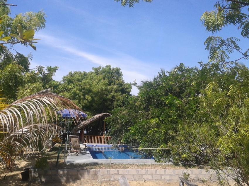 schwimm bad deep sea resort , Sri Lanka Diving Tours (Negombo), Sri Lanka