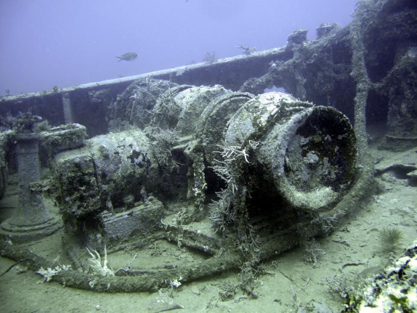 Boris Wreck , Lumbadive PADI 5 STAR RESORT, Tyrrel Bay, Carriacou - Grenada W.I., Grenada