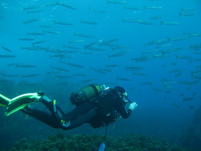 Xlendi Bay, Xlendi Bay,Gozo,Malta