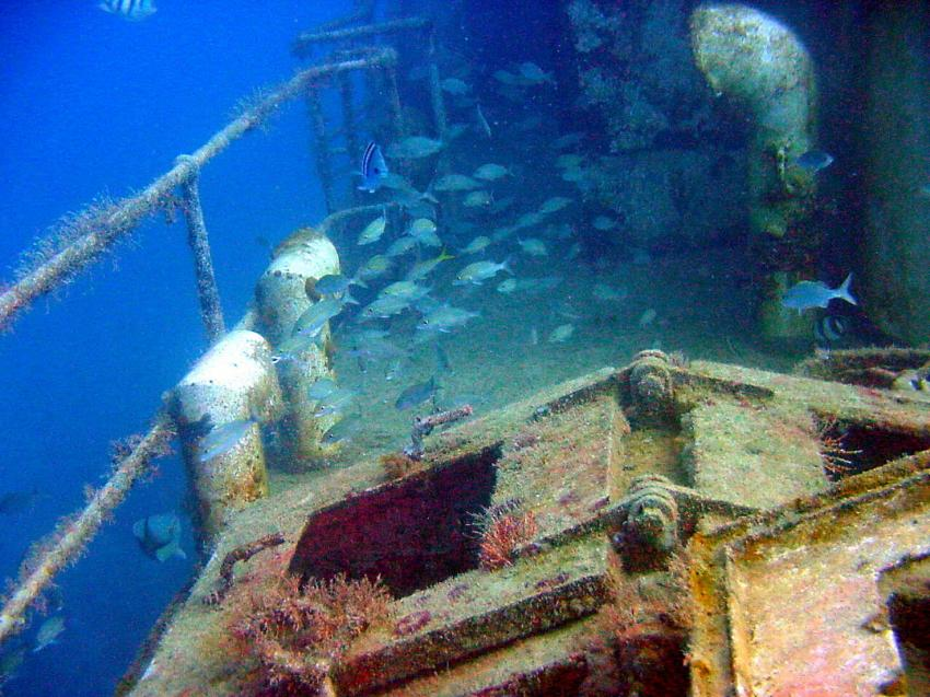 WestSider Wreck , Lumbadive PADI 5 STAR RESORT, Tyrrel Bay, Carriacou - Grenada W.I., Grenada