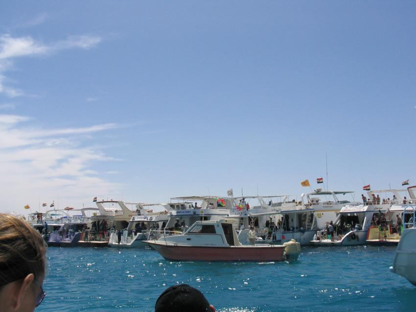 Giftun Island - Demo 22.04.2004, Giftun Island,Ägypten