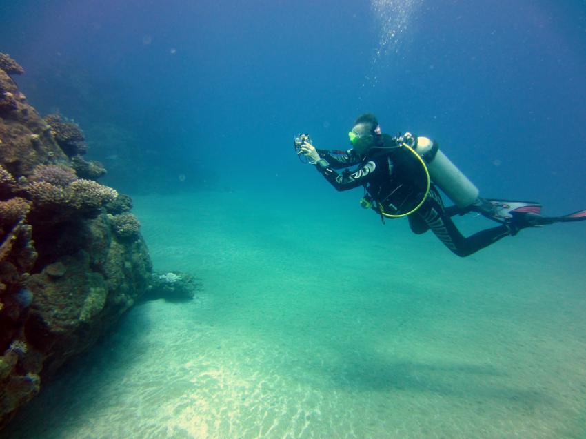 Taucher, Korallenblock, diving.DE Akassia, Ägypten, El Quseir bis Port Ghalib