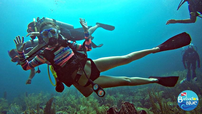 Womens Dive Day © Barbados Blue, Barbados Blue Water Sports, Barbados
