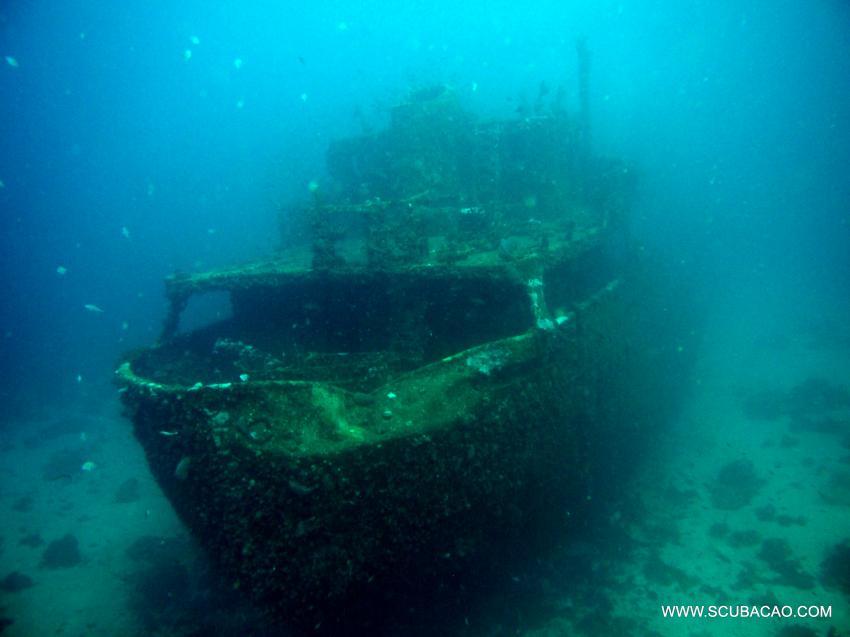 Superior Producer, tauchen, diving, duiken curacao, Scubacao Diving Adventures, Niederländische Antillen, Curaçao