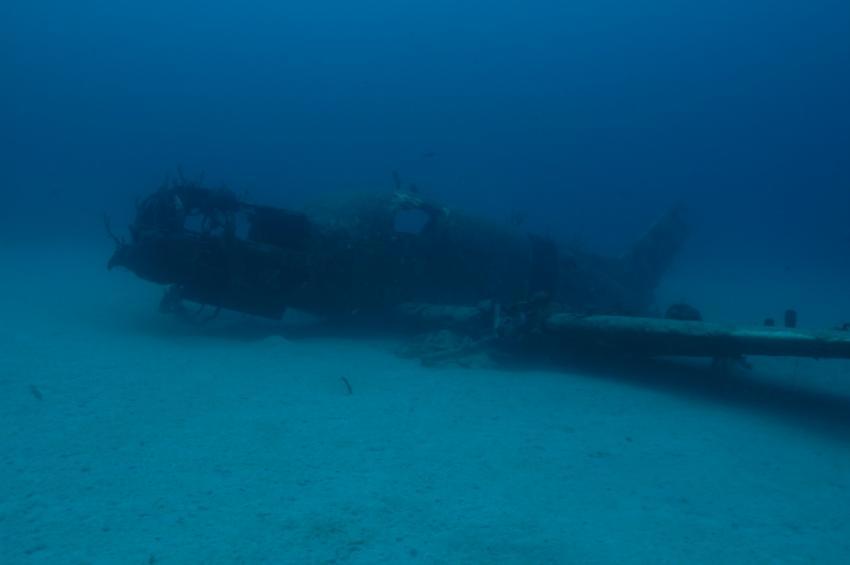 Negril unterwasser, ScubaCaribe Riu Negril Club, Jamaika
