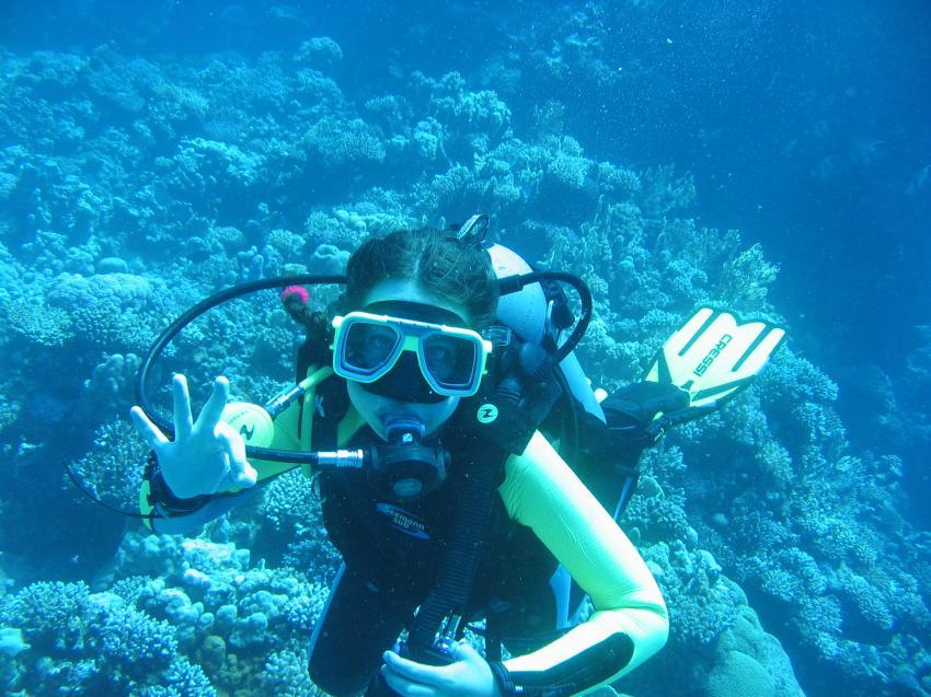 kleiner Blubb, Euro-Divers, Utopia Beach, Ägypten, El Quseir bis Port Ghalib