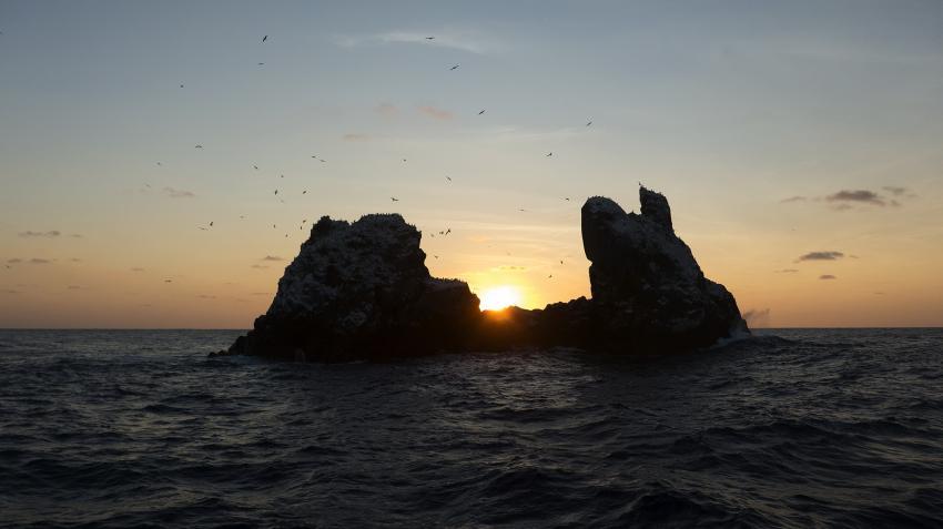 M/V Solmar V, Mexiko