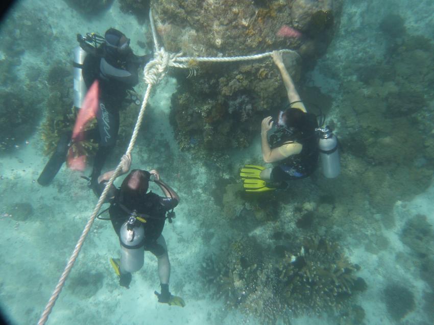 Blue Planet Diving Center, Alona Beach, Panglao, Bohol