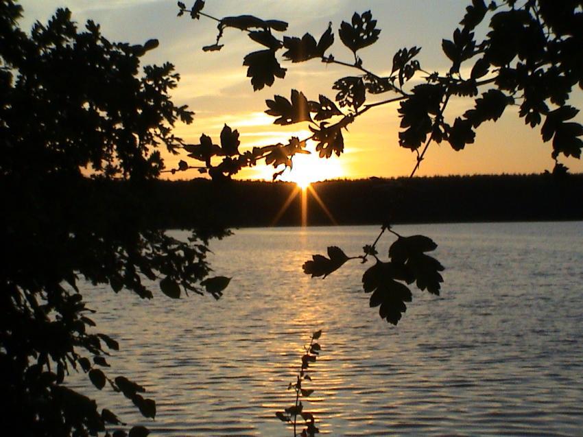Dreetzsee bei Thomsdorf ( Mecklenburger Seen ), Dreetzsee,Feldberger Seenlandschaft,Mecklenburg-Vorpommern,Deutschland