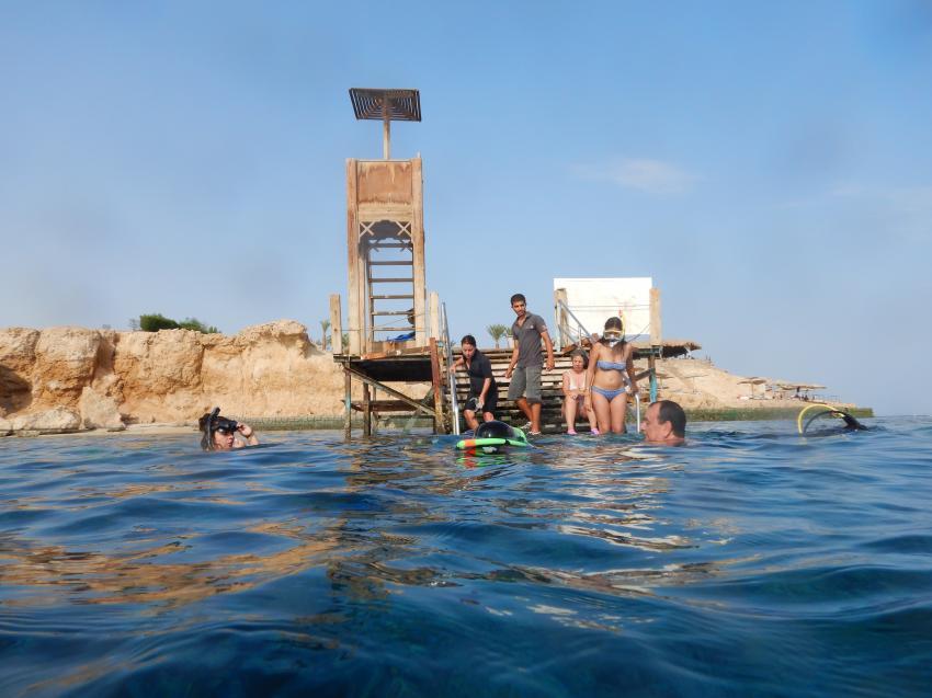 Einstieg Hausriff, Diving & Discovery, Sharm el Sheikh, Ägypten, Sinai-Süd bis Nabq