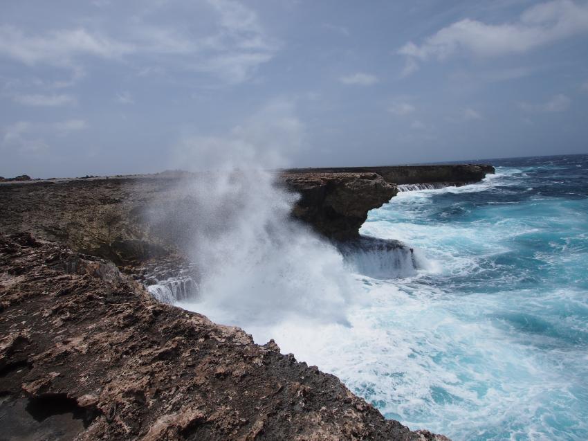 Bonaire allg., verschiedene Tauchplätze Bonaire,Bonaire,Niederländische Antillen