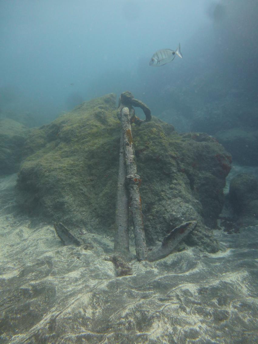 DER Anker am Hausriff, Diveria Diving Center, Alcala Teneriffa, Spanien, Kanarische Inseln