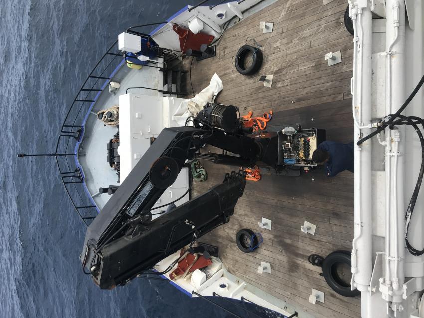 Bug des Schiffes, FEROX Colombia Dive Adventures, Kolumbien