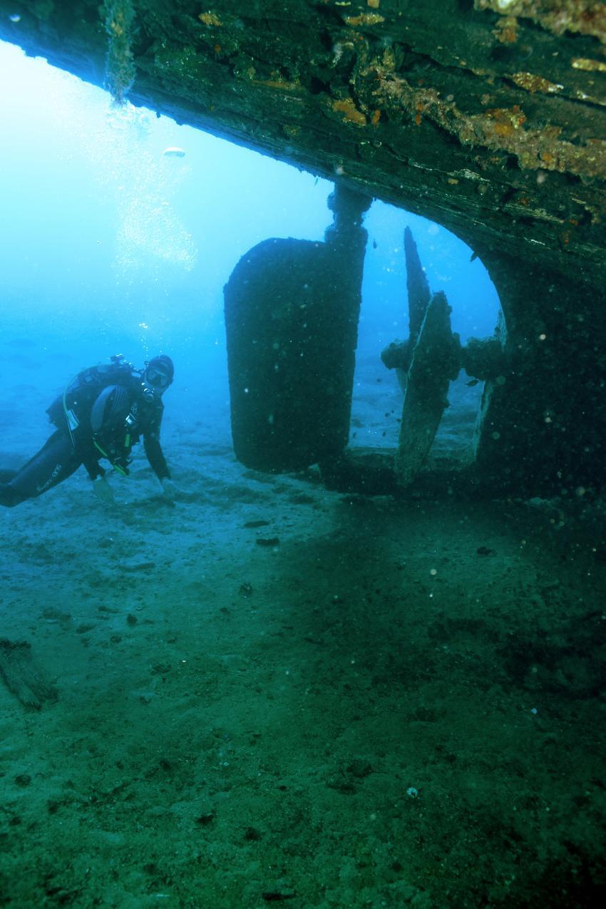 Insel Solta LEOMAR, Insel Solta,Kroatien