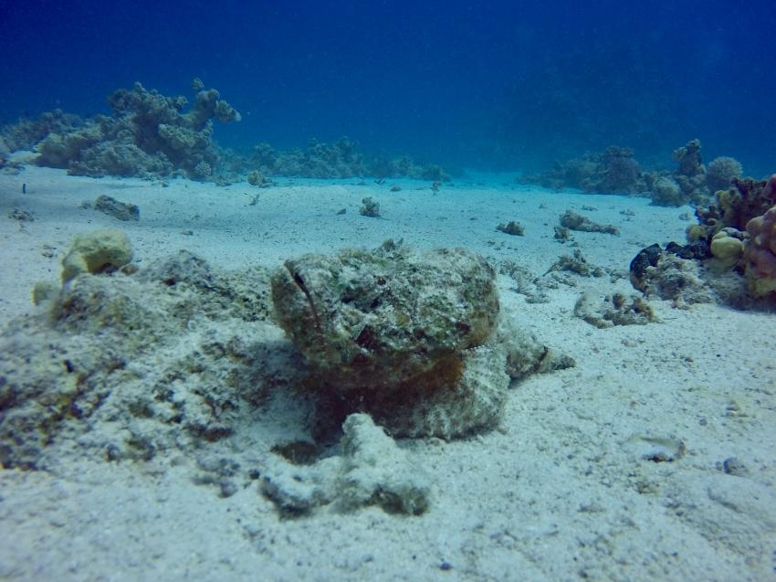 Extra Divers - Sahl Hasheesh, Ägypten, Hurghada