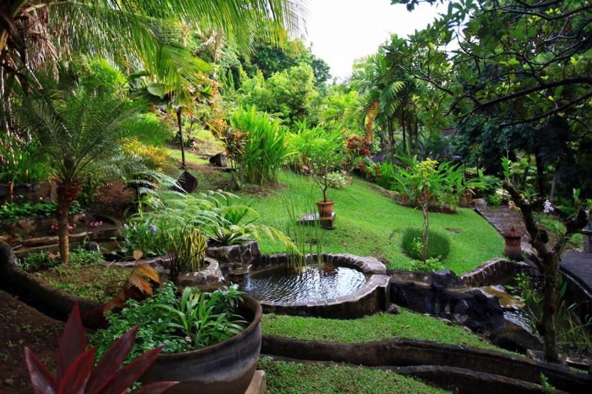 Garten, lumbalumba diving, manado, Indonesien, bunaken, tauchen, sulawesi, resort, Lumbalumba Diving Resort, Manado, Sulawesi