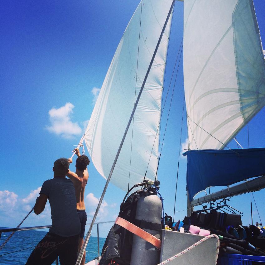 sailing and diving, Rum Runner, Cairns, Australien