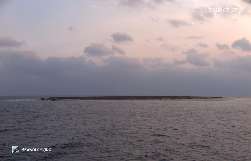 Dahrat Abid, Seawolf Diving Safari Sudan Süden, Dahrat Abid - Aabida, Südsudan, Sudan