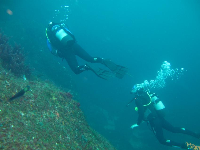 Best Spot Azores PADI 5 star Dive Center, Sao Miguel, Portugal, Azoren