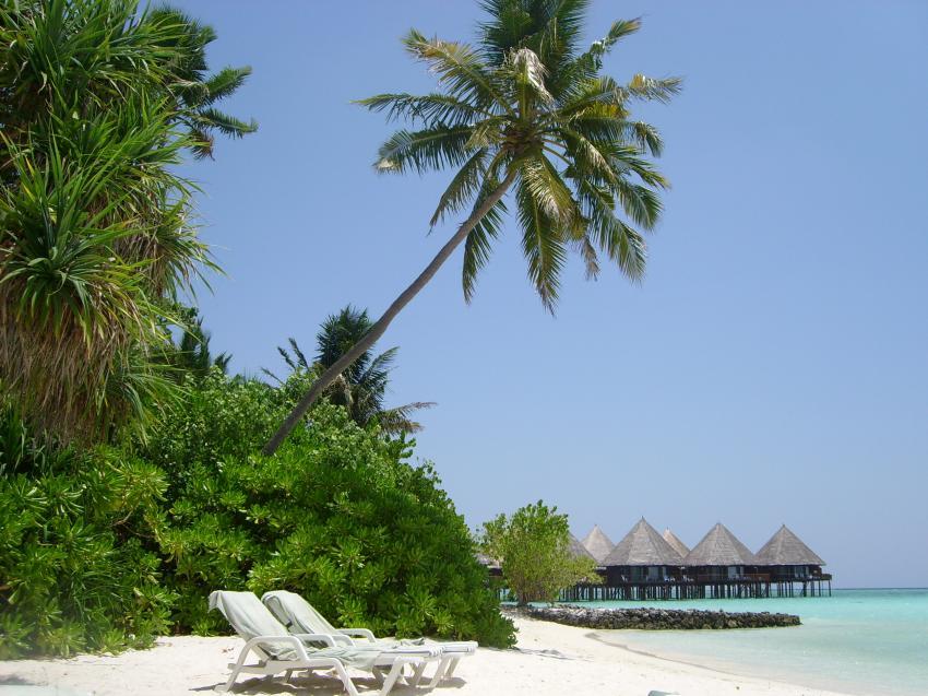 Strand mit Hütten - unter Palmen