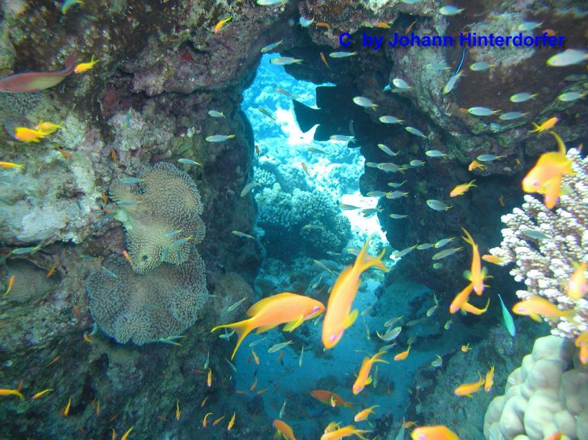 Dahab   Bells - Blue Hole - Canyon, Blue Hole (Dahab),Ägypten