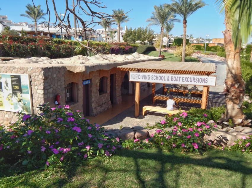 Dive In, Hotel Renaissance Golden View Beach Resort, Sharm El Sheikh, Ägypten, Sinai-Süd bis Nabq