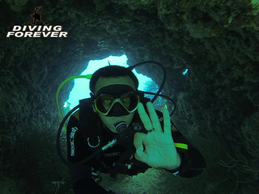 tauchschule hurghada www.divingforever.com, tauchschule hurghada www.divingforever.com, Diving Forever Hurghada, Ägypten, Hurghada