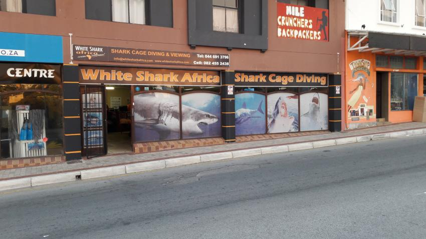White Shark Africa Office, White Shark Africa, Südafrika