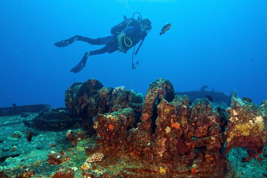 Bildrr im Nord Westen Mauritius, Orca Diveclub Merville,Grand Baie,Mauritius