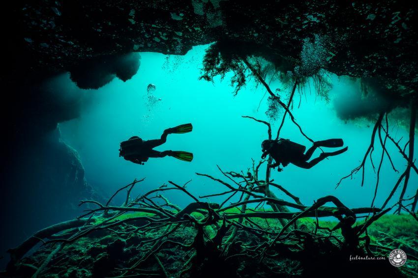 Tauchen in Car Wash - Aktun Ha., Cenote Adventures, Mexiko