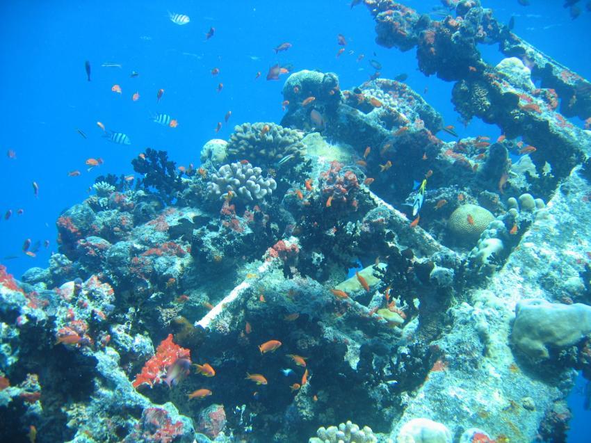 Kuredu - Lhaviyani Atoll, Kuredu,Malediven