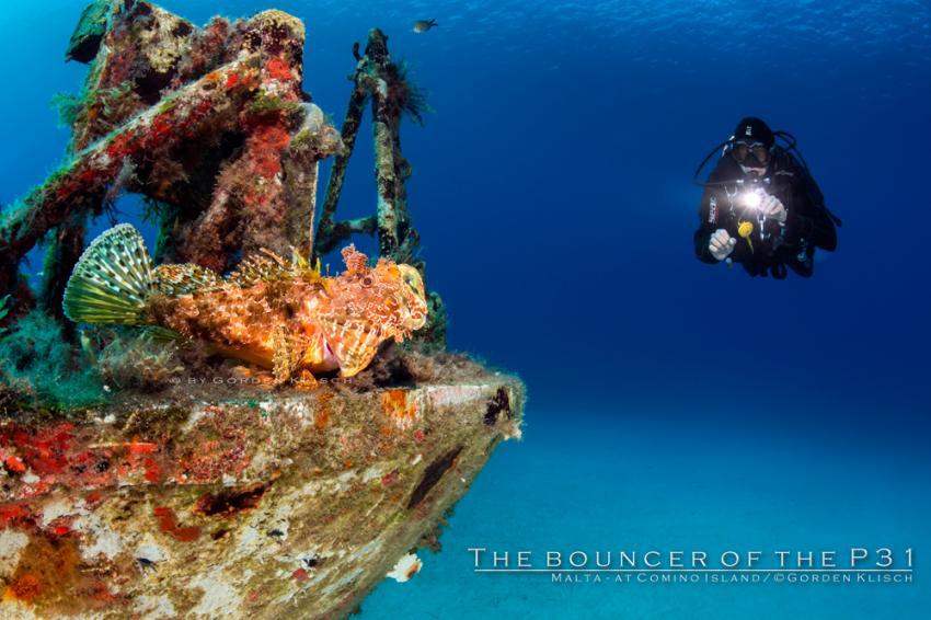 The bouncer of the P31 Wreck / Gorden Klisch, Wrack P31 ex. Pasewalk, Comino, Malta, Comino